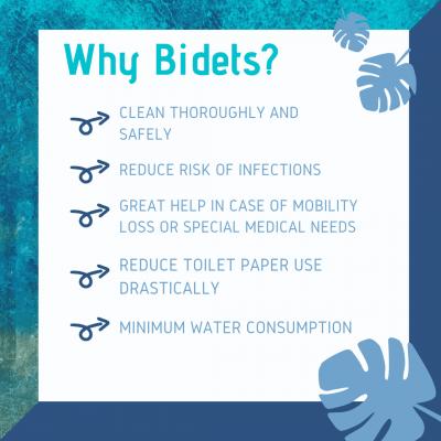 Why Bidets chart
