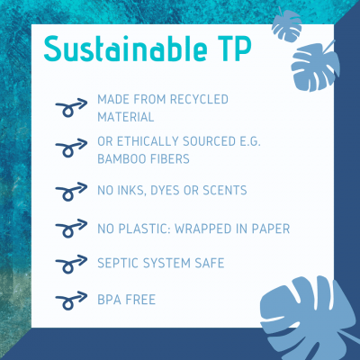 Why we love sustainable toilet paper